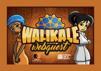 Walikale Webquest
