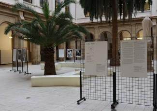 """Exposición itinerante """"La Rosa Blanca. La resistencia de estudiantes contra Hitler 1942/43"""""""